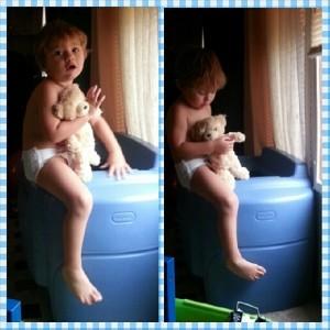 Sammy with Teddy