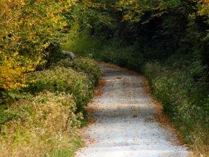 A Few Steps to Heaven